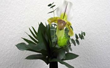 Floristik Frauenschuh Orchidee (Paphiopedilum) in einem Blumenstrauß binden.
