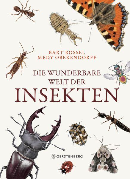 Die wunderbare Welt der Insekten